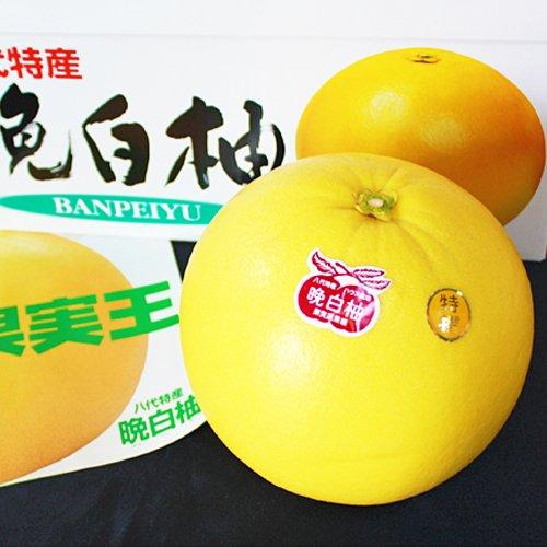 【 熊本県産 】 晩白柚 ( ばんぺいゆ ) 秀品 2L~Lサイズ