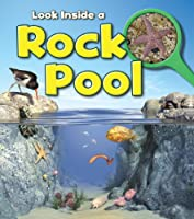 A Rock Pool (Young Explorer: Look Inside)