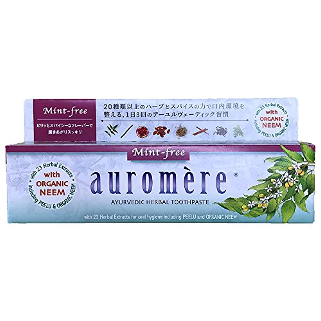 交流するアヒル入札オーロメア 歯磨き粉 ミントフリー (100g)