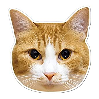 kmag 猫の顔マグネット 茶白ねこ