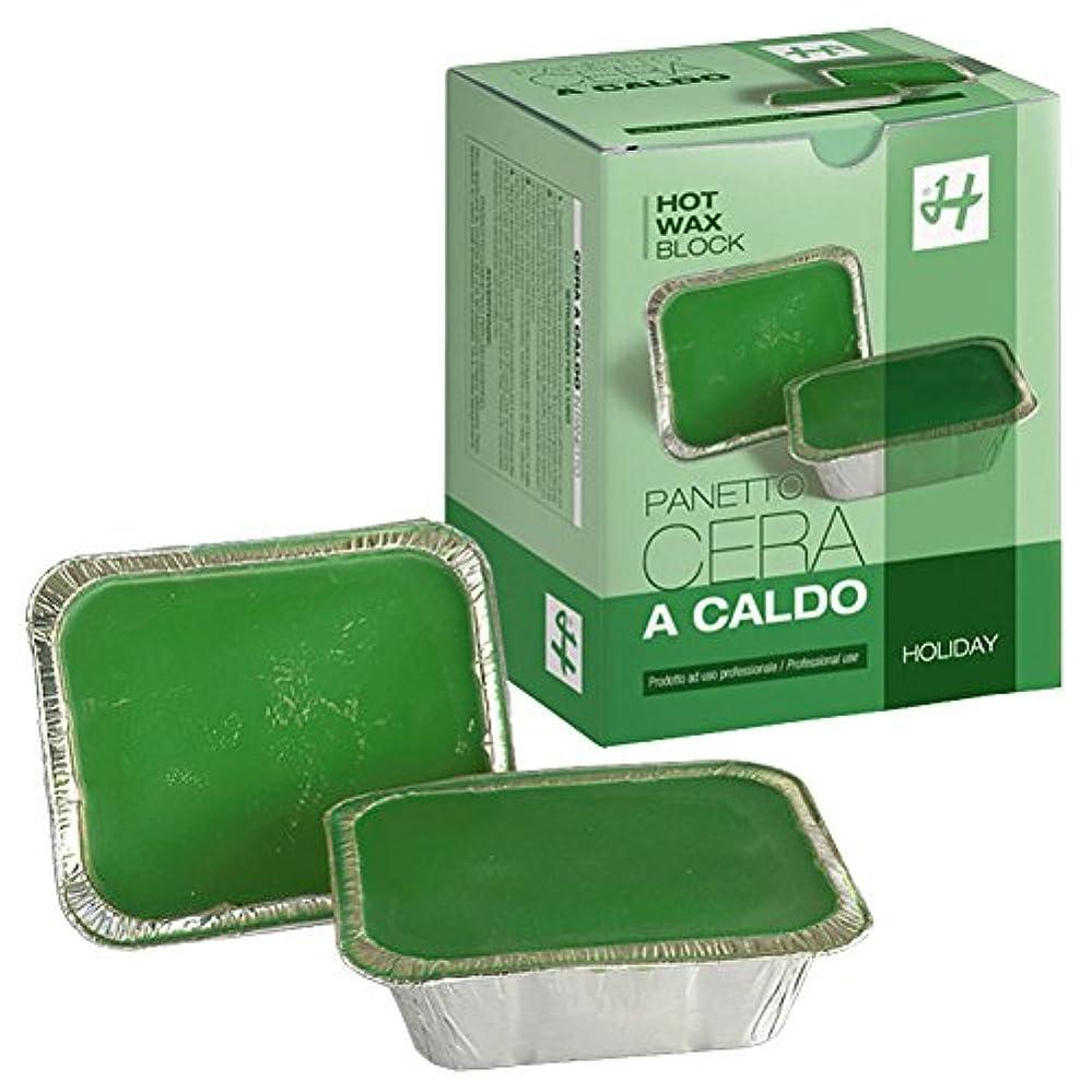 通知するゴールデン香ばしいHOLIDAY JAPAN (ホリデイジャパン) ホットワックス?グリーン 500g×2個 ハードワックス ブロックワックス イタリア製 ブラジリアンワックス WAX