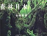 森林日本 画像