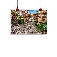 """キャンバスウォールアート トスカーナ、ベゴニア植物 木製シャッター、寝室、リビングルーム、キッチン、浴室のアートワーク 24""""x20"""" (60cm x 50cm)"""