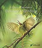 Visual Celebration of Borneo's Wildlife: [All Royalties Donated to Fauna & Flora International] (English Edition)