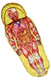 人体模型寝袋