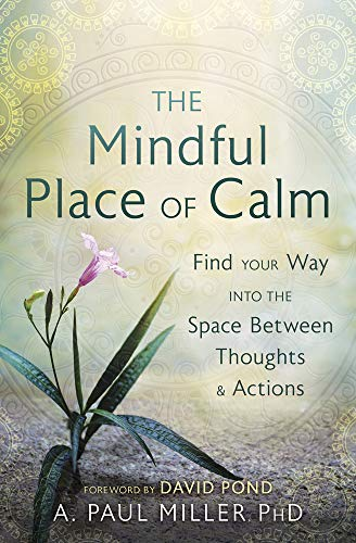 The Mindful Place of Calm: Find Your Way into the Space Between Thoughts and Actions (English Edition)