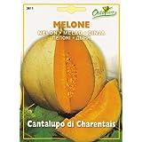 【HORTUS社種子】【Art.3811】メロン・Cantalupo di Charentais