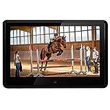 DVDプレーヤー 車載 Pumpkin 10インチ タッチスクリーン モニター HDMI対応 1080P 高画質