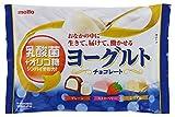 名糖産業 ヨーグルトチョコレート 140g×12袋