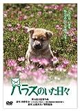 「きな子~見習い警察犬の物語~」DVD発売記念 犬だワンダフルキャンペーン ハラスのいた日々 (限定生産)