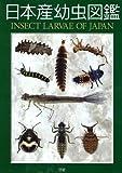 日本産幼虫図鑑 画像