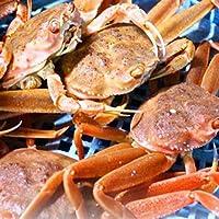 セイコガニ 活 北海道産 香箱ガニ せいこ蟹 せいこがに セコガニ 訳あり たっぷり1kg詰(約4-6尾入)身入り7分前後
