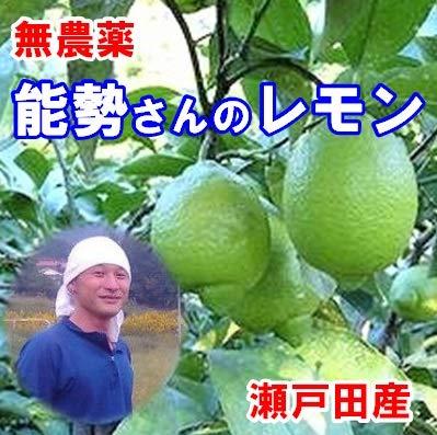 広島レモン 能勢さんの無農薬レモン 5kg A品 防腐剤 防カビ剤不使用 瀬戸田レモン 国産レモン