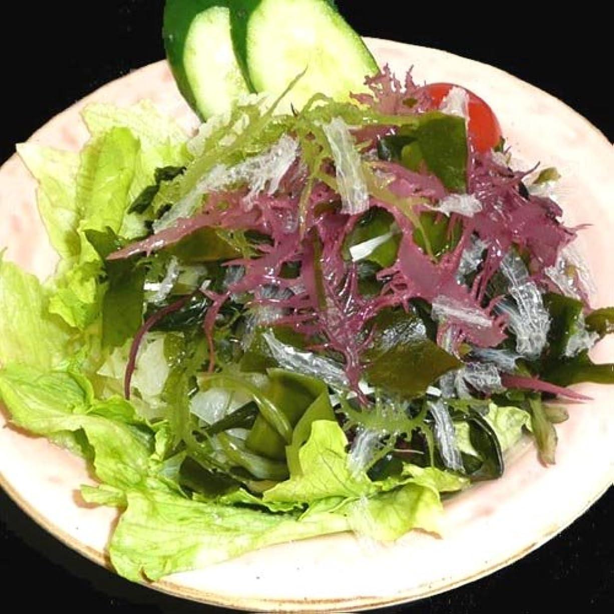 はっきりと騒アルバムサンエイオンラインショップ 業務用海藻かんてんダイエットサラダ 100g 9食分
