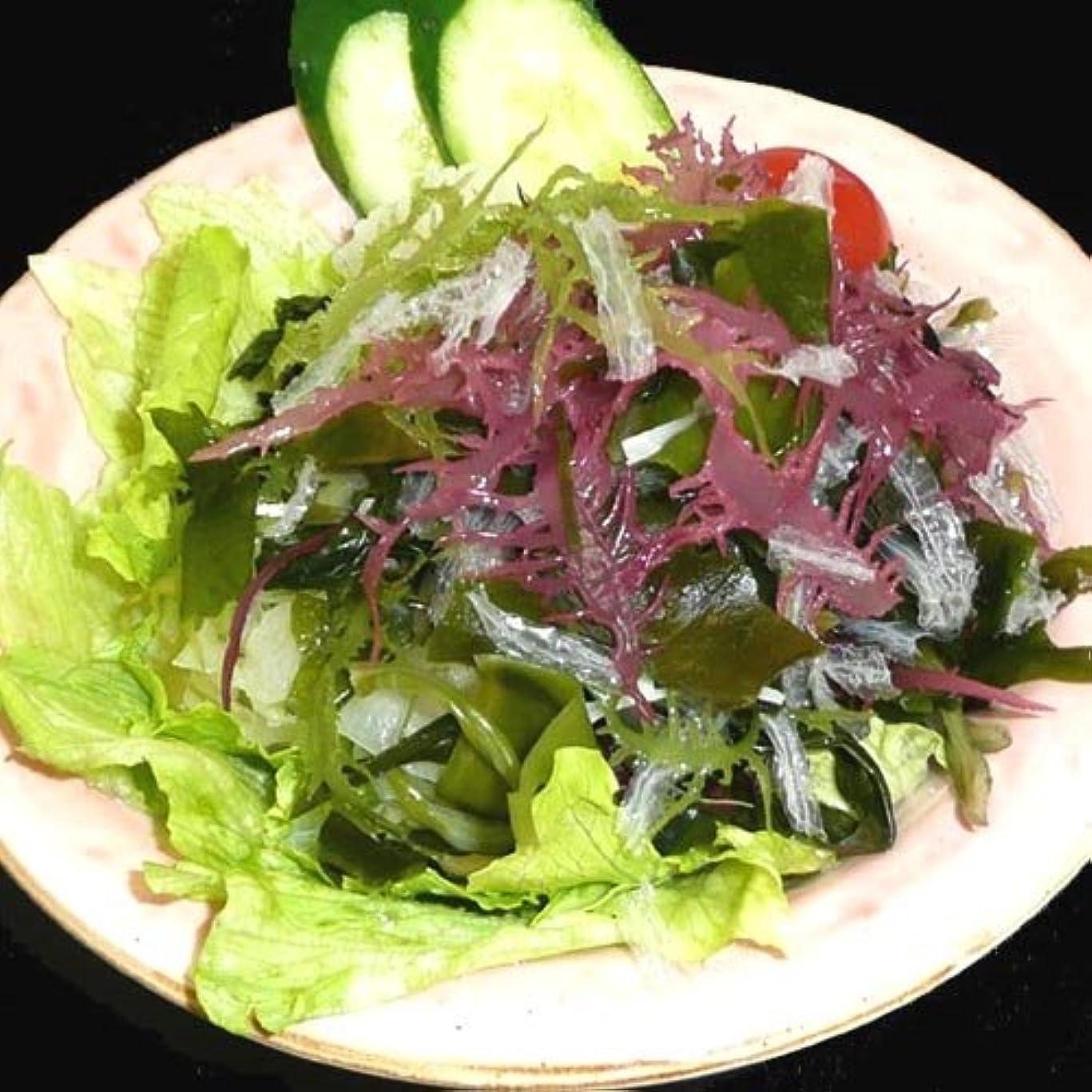 水具体的に密度サンエイオンラインショップ 業務用海藻かんてんダイエットサラダ 100g 9食分