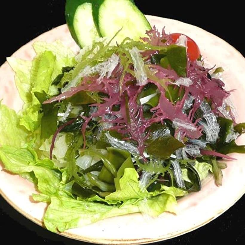リスナー祝福するインストールサンエイオンラインショップ 業務用海藻かんてんダイエットサラダ 100g 9食分