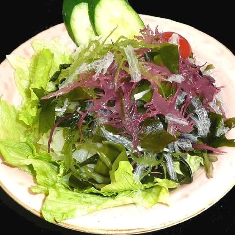 ワーカーモンク誤解を招くサンエイオンラインショップ 業務用海藻かんてんダイエットサラダ 100g 9食分