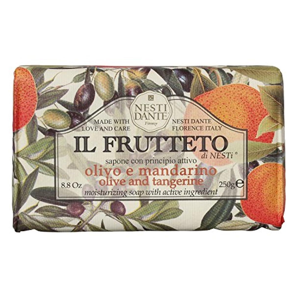 中世の小麦粉中世のNesti Dante ネスティダンテ フルッテートソープ オリーブ&タンジェリン 250g