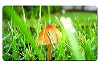 芝生のキノコ パターンカスタムの マウスパッド 旅行 風景 景色 デスクマット 大 (60cmx35cm)
