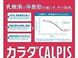 カルピス カラダカルピス 500ml×24本