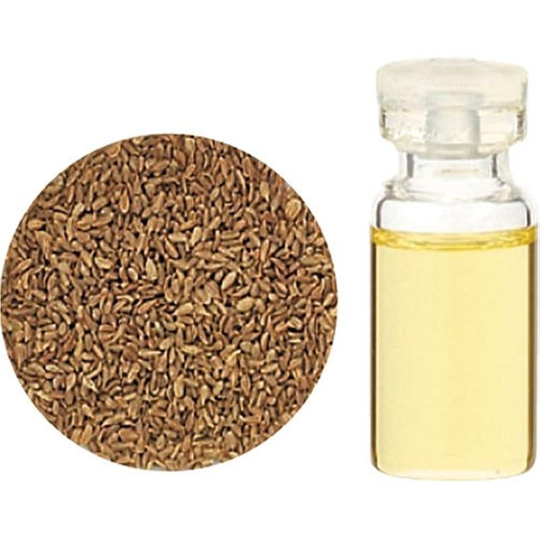 変換する皮肉な開梱Herbal Life キャロットシード10ml