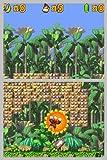 ドンキーコング ジャングルクライマー 画像