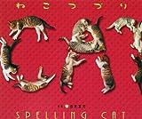 ねこつづり―猫文字はあなたを幸せにする!
