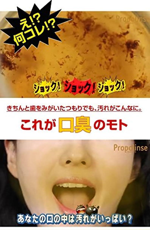 十分フルーツ刺激するプロポリンス ハンディパウチ 12ml(1袋)×100袋 健康グッズ 衛生用品 [並行輸入品]