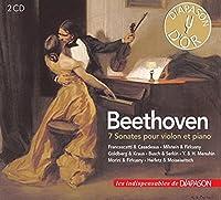 Violin Sonatas: S.goldberg A.busch Francescatti Milstein Morini Heifetz Menuhin