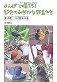さんぽで撮ろう!都会のみぢかな野鳥たち―野の鳥・水の鳥94種