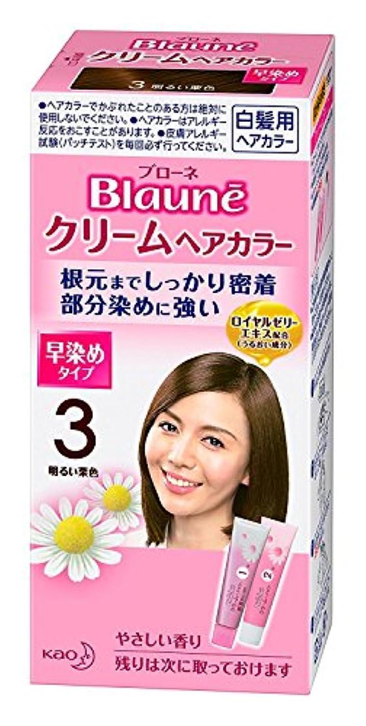 アルファベット優しい渇き【花王】ブローネ クリームヘアカラー 3明るい栗色 ×5個セット