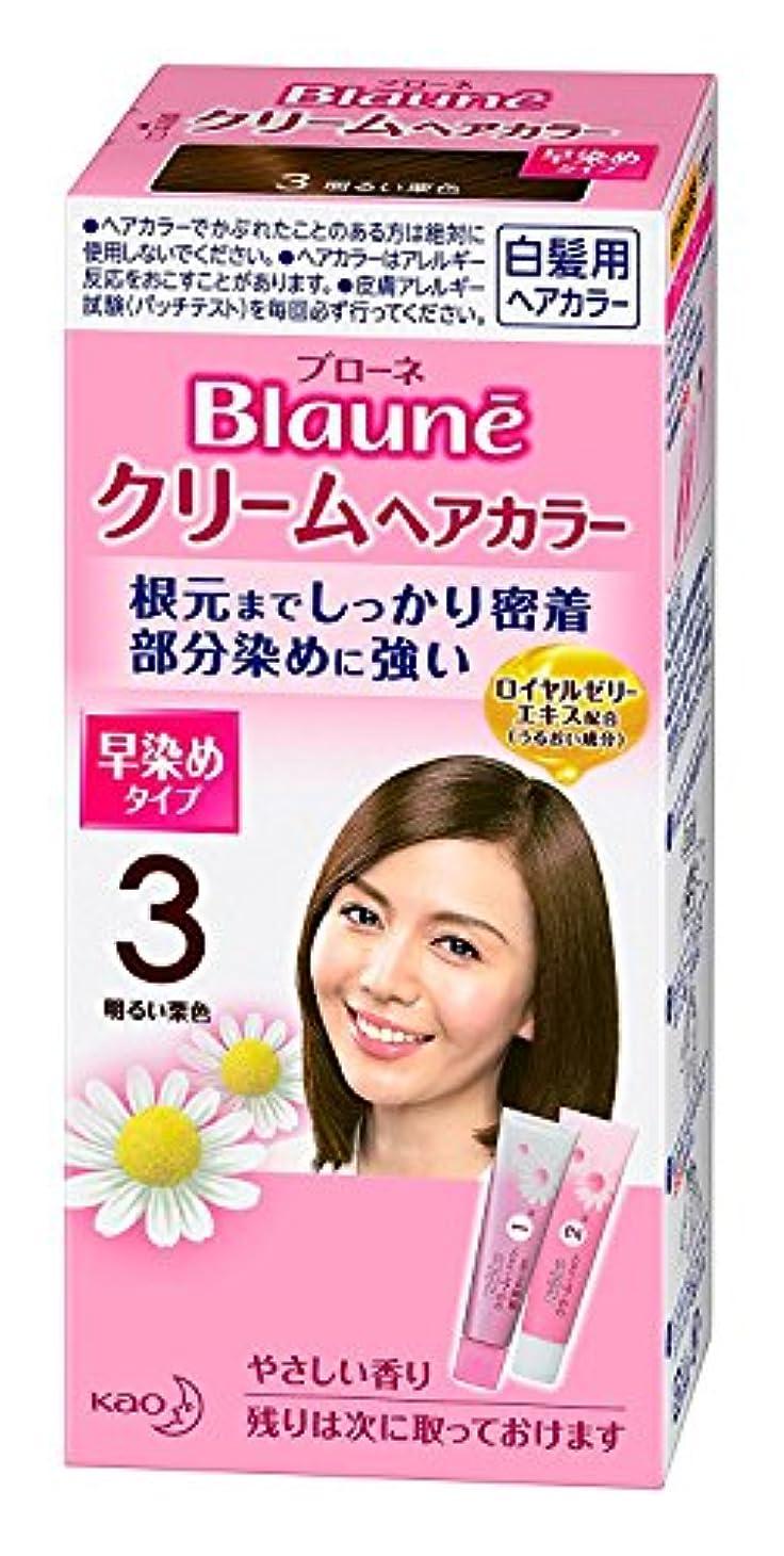 レルムラリー反毒【花王】ブローネ クリームヘアカラー 3明るい栗色 ×5個セット
