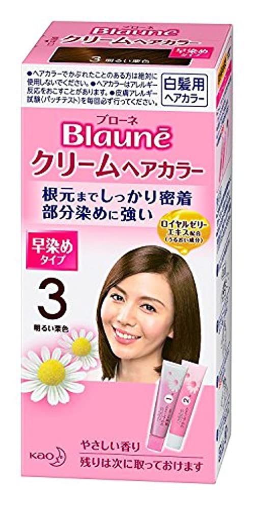 タヒチ黒カール【花王】ブローネ クリームヘアカラー 3明るい栗色 ×10個セット