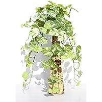 インテリアグリーン人工観葉植物・ポトススタンドタイプ(網籠)、光触媒製品