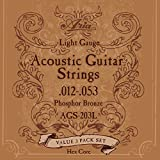 Aria アリア フォークギター弦 3セットパック 12-53 Light ライト AGS-203L