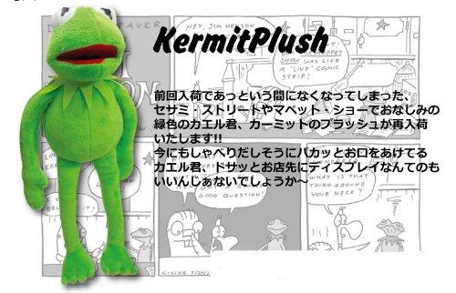 [해외]아메리칸 잡화 | 세서미 스트리트로 친숙한 커미트 인형/Kermit plush toy familiar with American goods | Sesame Street