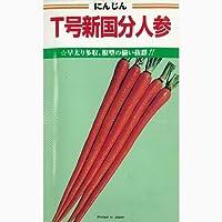 にんじん 種 T号新国分 小袋(約20ml)