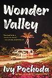 Wonder Valley: A Novel