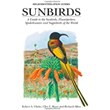 Sunbirds: A Guide to the Sunbirds, Spiderhunters, Sugarbirds and Flowerpeckers of the World