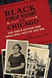 Black Public History in Chicago: Civil Rights Activism from World War II into the Cold War (New Black Studies)