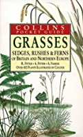 Grasses, Sedges, Rushes and Fern of Britain & Northern Europe (Collins Pocket Guide)