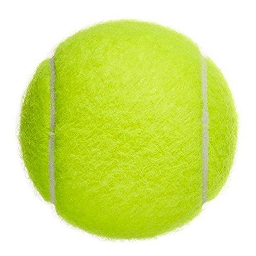 (デマ―クト)De.Markt テニスボール スポーツ トレ...
