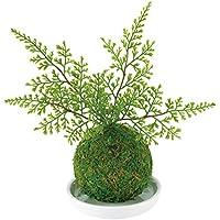 Kishima キシマ 和盆栽 苔玉 消臭 アーティフィシャルグリーン シノブ KH-61057 KH-61057