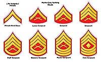 "USMC海兵隊ランキングDecals各平均化について4"" Fastからのアメリカ合衆国"