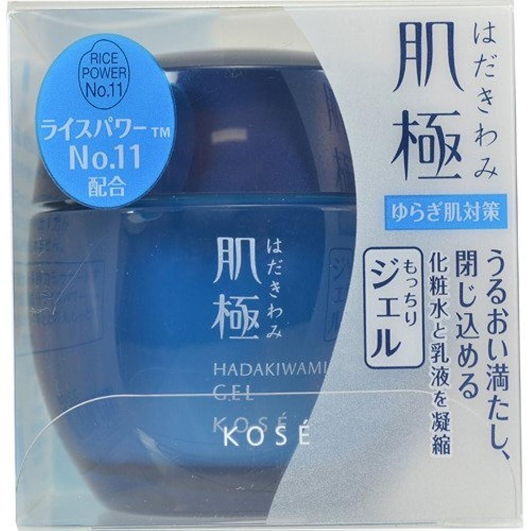 シルエット思春期の尊敬する肌極 化粧液(ジェル) 40g