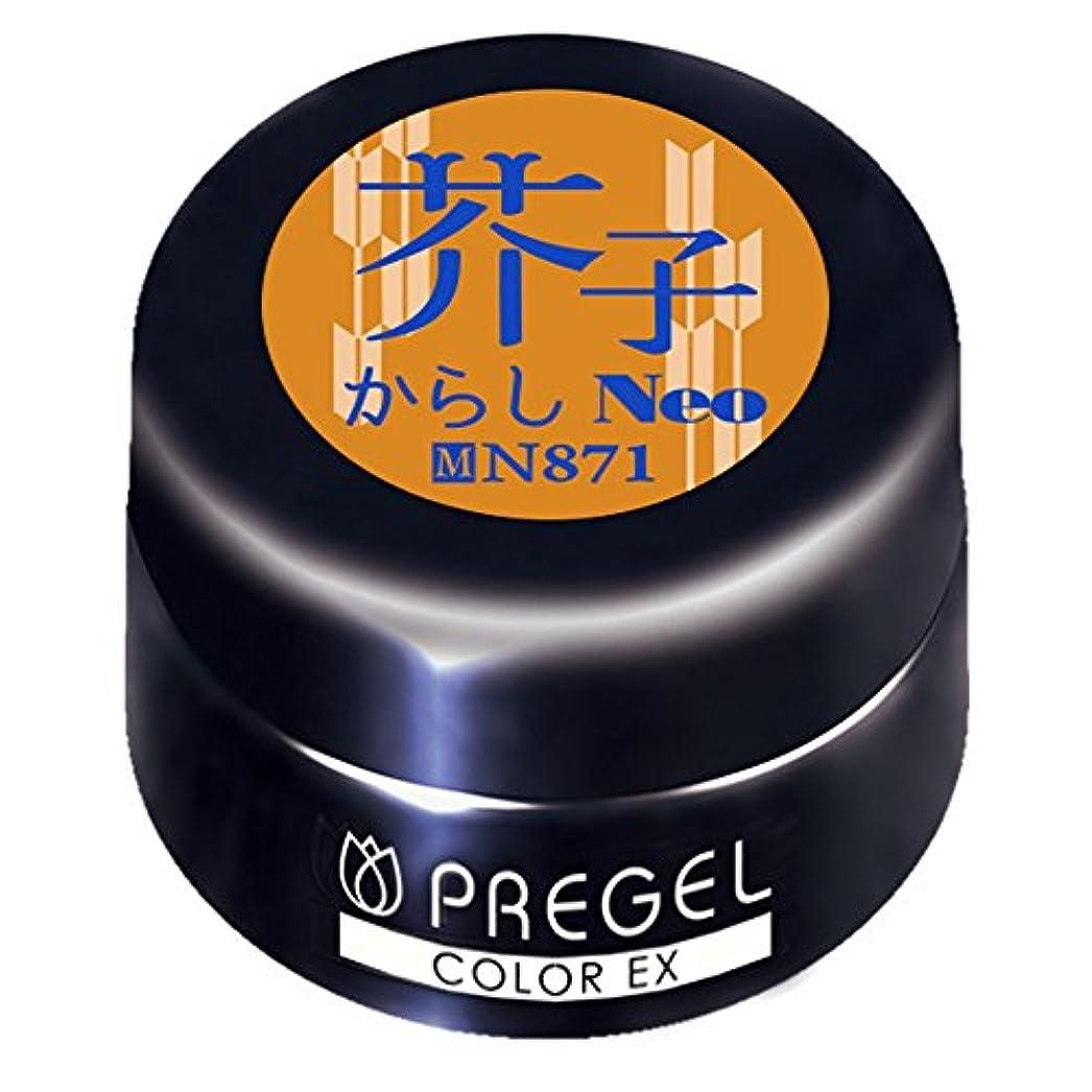 写真を描くそう頑張るPRE GELカラーEX 芥子(からし)neo 3g PG-CEN871