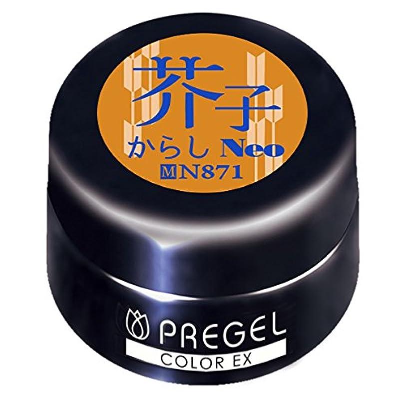 端窓を洗うパドルPRE GELカラーEX 芥子(からし)neo 3g PG-CEN871