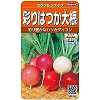 サカタのタネ 実咲野菜5370 カラフルファイブ 彩りはつか大根 00925370