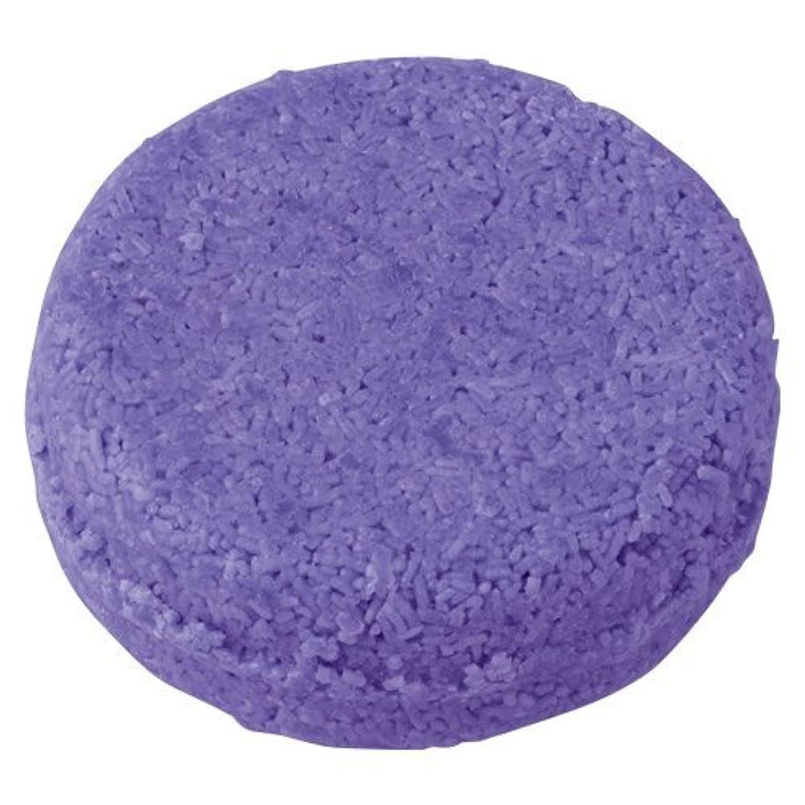 アロング販売員実装するラッシュ 紫ショック(55g)