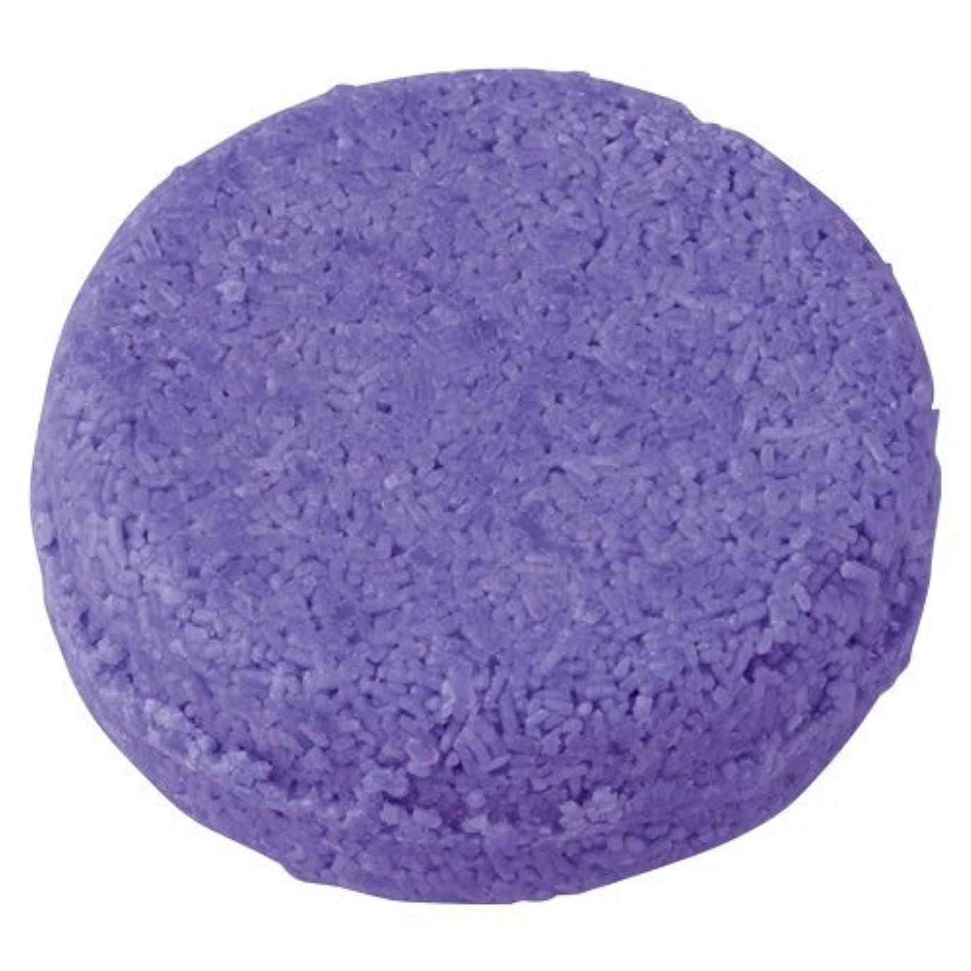 盲目長いです平らなラッシュ 紫ショック(55g)